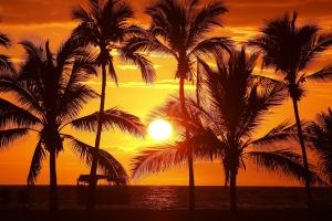 毎年1週間、心休まる場所ハワイに還る