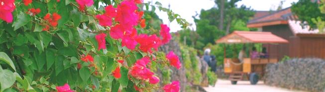 沖縄好きセレブが秘かにリピートする、魅惑の沖縄リゾート