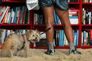 あなたの家の本棚をCHECK!頭のよい子が育つ本棚【2】