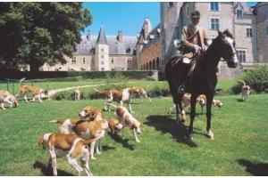 フランス貴族が住む中世のシャトーで結婚式を挙げる【1】