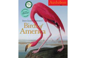 出版史上最高額の9.7億円で落札「米国の鳥類」