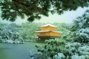 2011年、京の年明け