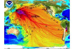 津波のエネルギーが南極にまで