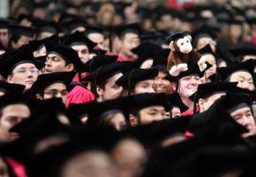 名門大学債券への投資が大人気