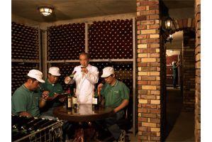 「日本にこんなワインがあったのか」~鳥居平物語~(5)