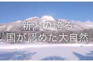 30億円の霊園開発に「イチローファンド」?