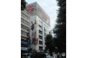 【不動産投資】BNF氏、秋葉原ビル170億円落札の裏側