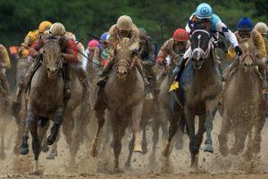 JRA馬主登録要件緩和で、馬主数は増えるか