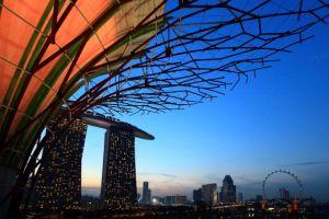 マネーロンダリングの疑いある取引25%増加(シンガポール)