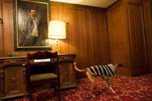 高級ホテル宿泊の社長狙うマルウェア「Darkhotel」