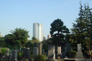 青山霊園の抽選結果、一般埋葬倍率13.05倍