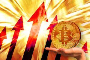 ビットコイン投資ヘッジファンドのリターンが2万5004%
